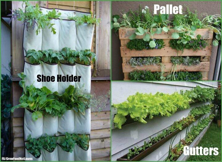 Vertical Gardening Ideas Pinterest Photograph Vertical Gar