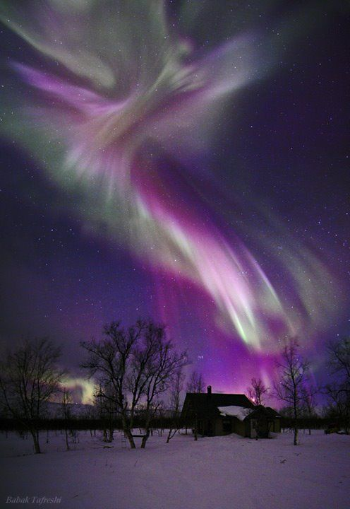 Amazing Aurora Borealis <3