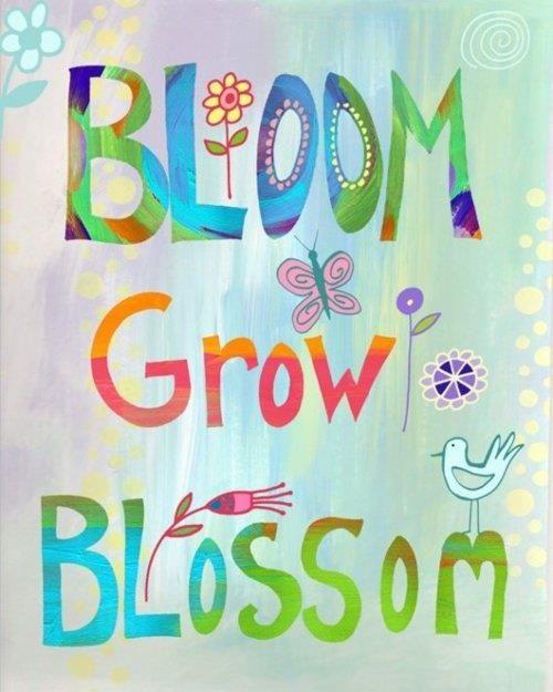 *  Bloom * Grow * Blossom *