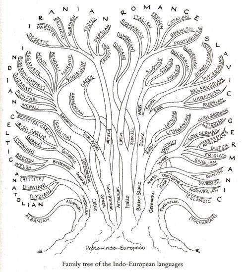 Svenska med Marina (Förberedande undervisning): Språkträd