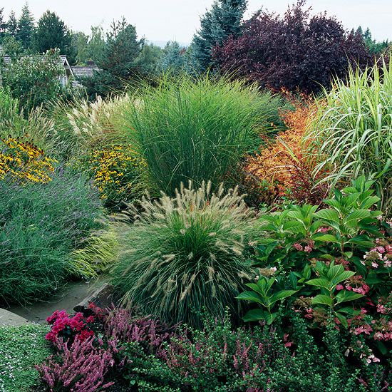 feel free landscaping with ornamental