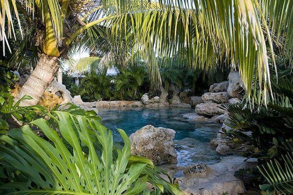 florida natural landscape landscaping-swimming-pool-tropical-plants-sarasota-bradenton-florida