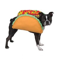 The gallery for --> Taco Costume For Dogs