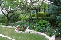 Central Texas garden | Backyard Ideas | Pinterest