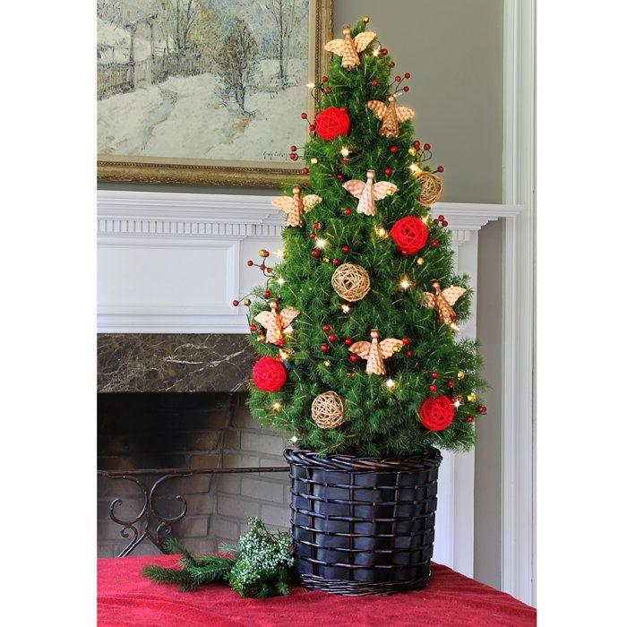 christmas trees delivered harrogate