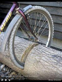 Homemade bike rack. | DIY | Pinterest