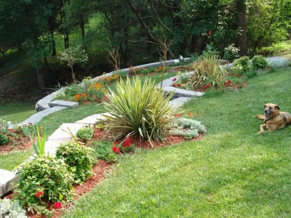 landscaping ideas backyard hill