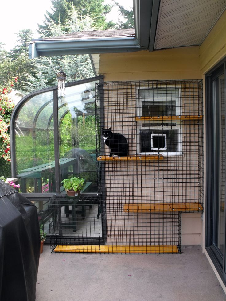 Outdoor Cat House For Winter Winter Cat Shelter