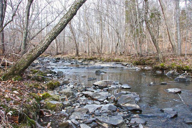 Little River Regional Park: Durham NC | Local Locale NC ...