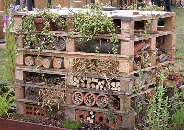 a beneficial wild bee home using pallets!