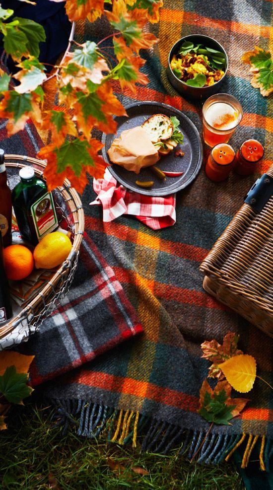 Fall picnic. Perfect combo