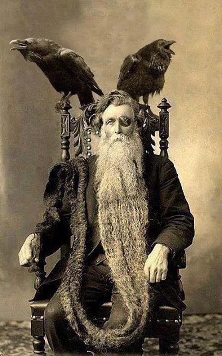 This photo was taken in 1912/13, of Hans Nielsen Langseth (b.Norway, 1846–d.North Dakota, 1927), who held (holds?) the record for longest beard. The ravens are a recent addition, not part of the original photo (see previous pin)