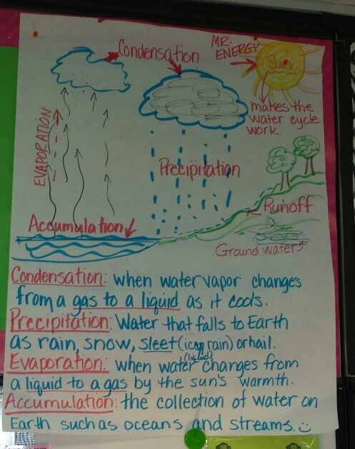Mrs Baril's Bunch Anchor Charts For Earth And Space Science