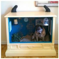 Give Your Dog a Room of His Own