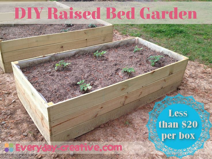 Cheap Raised Garden Bed Ideas Photograph Related Gallery F