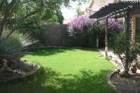 Backyard design - phoenix | Outside | Pinterest