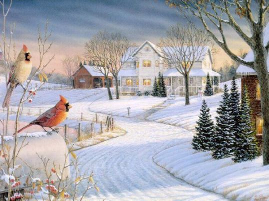Image result for Country Winter Scenes