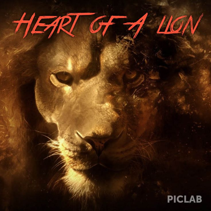 Heart Lion Quotes