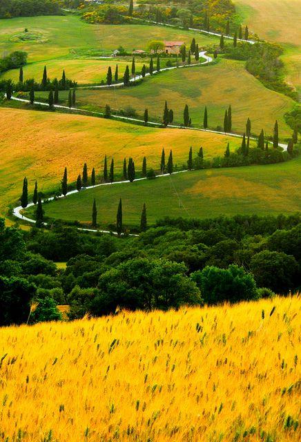 Zig Zag Road ♦ Tuscany, Italy | by Sergio Amiti