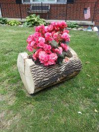 Tree trunk flower pot!   Craft Ideas   Pinterest