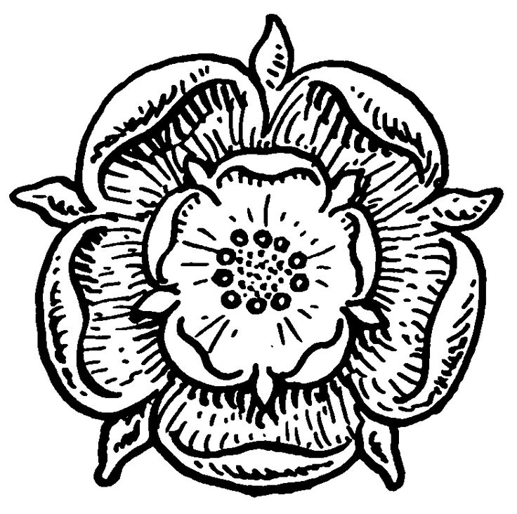 Tudor Rose Coloring Pages Coloring Pages