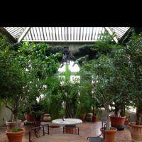 Covered Garden Atrium