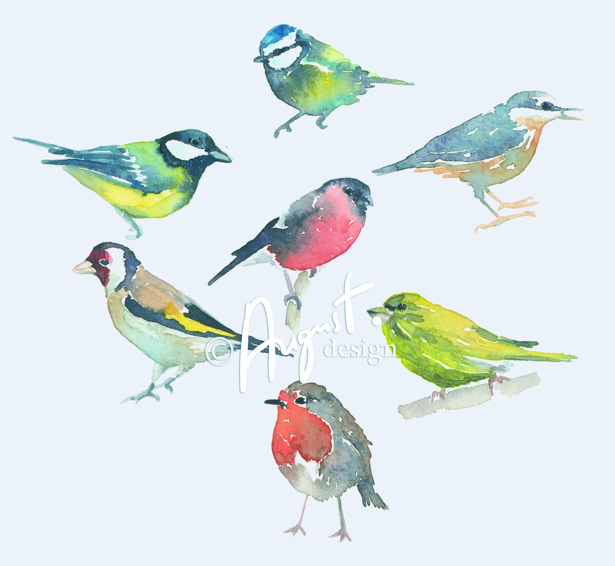 Images About Watercolor Birds Tutorials On Pinterest