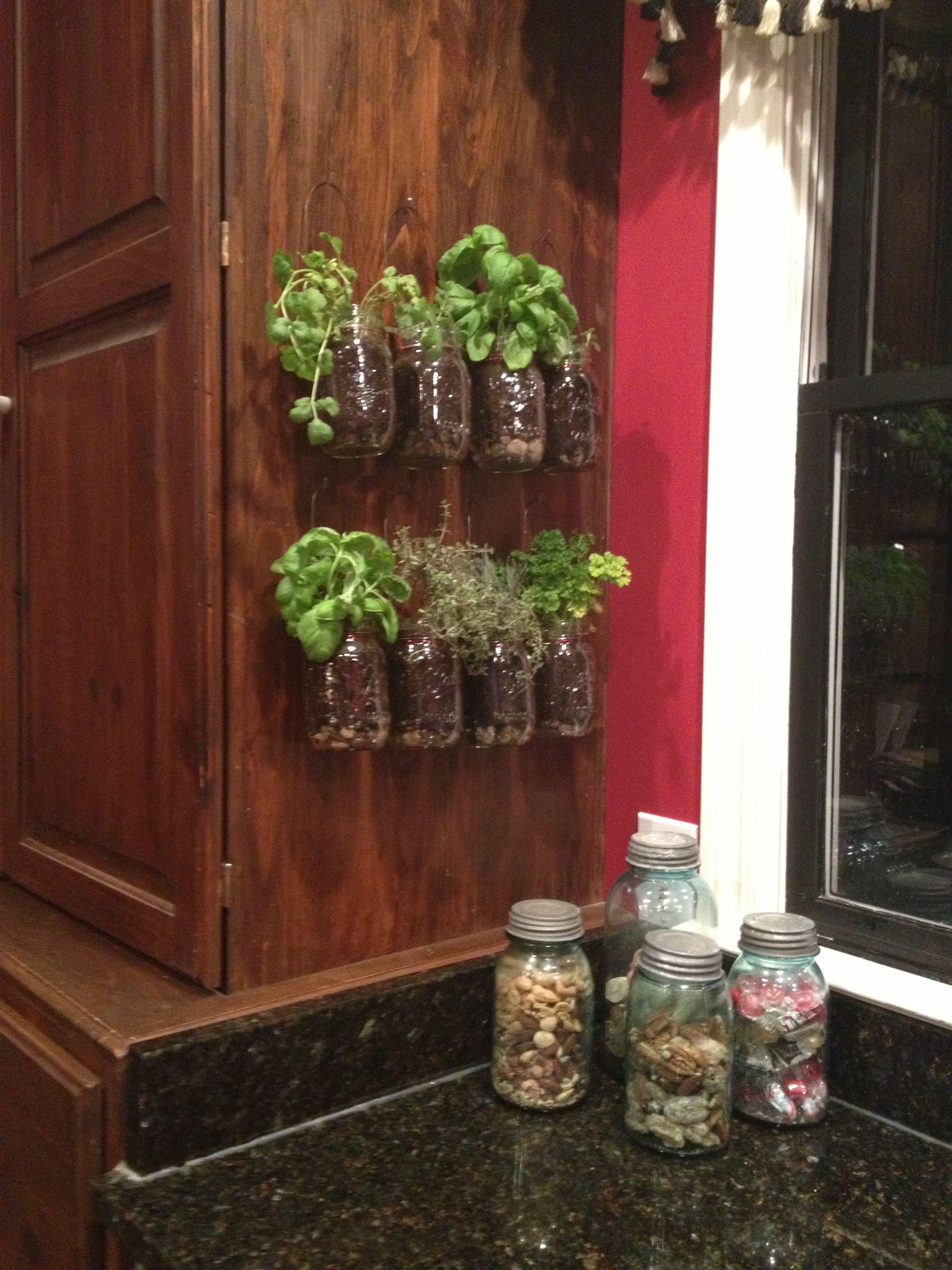 Kitchen herb garden  Garden Stuff  Pinterest