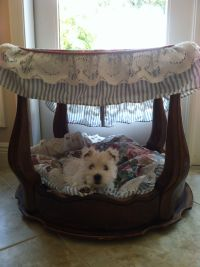 Small Dog Beds with Canopy - Bing images