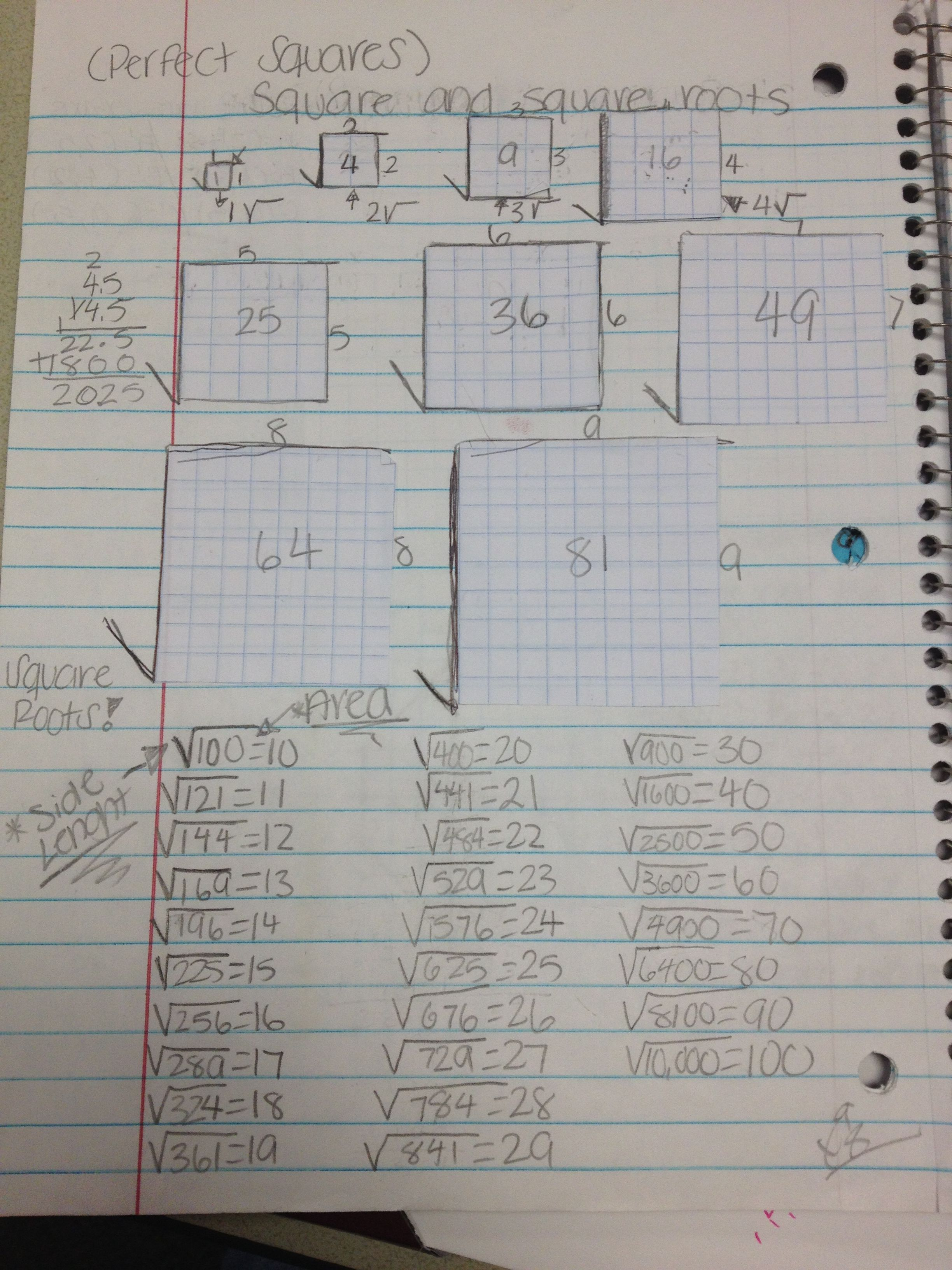 Squares And Square Roots Math