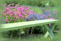Garden Bench | Flower Gardens | Pinterest
