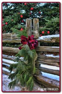 Country Christmas Outdoor Decorations