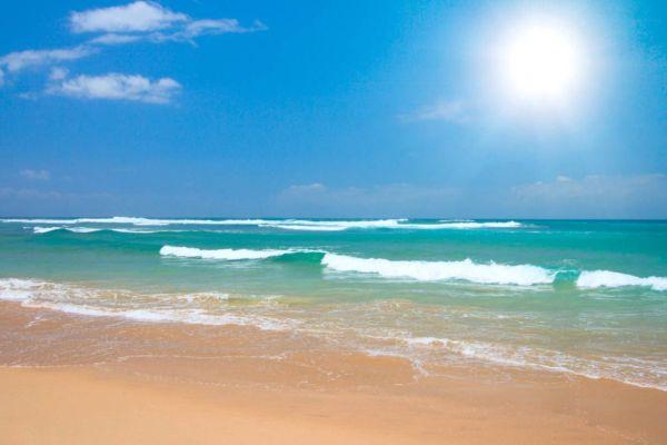 Pin by Brinda Crowder Carter on I Love Beaches