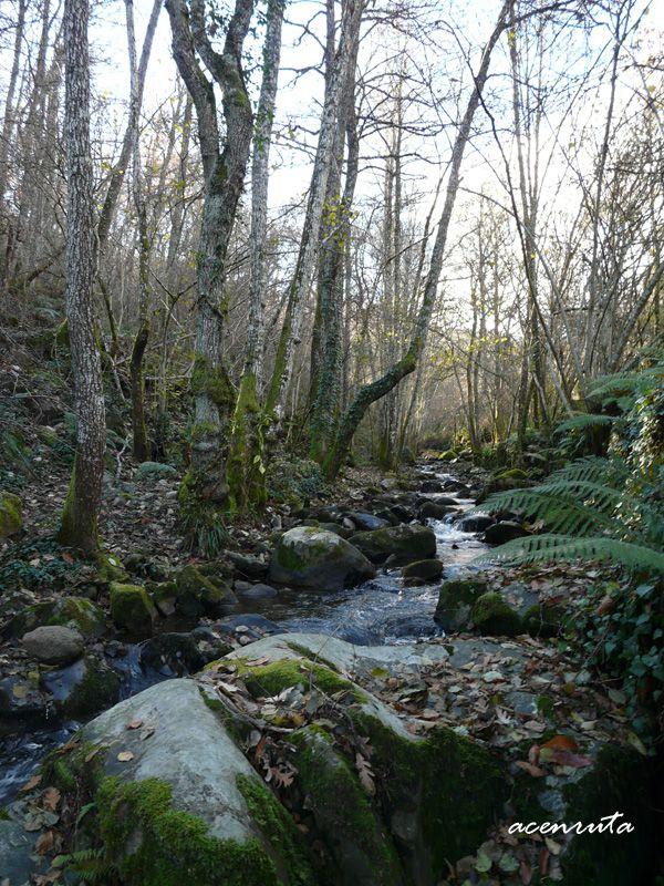 El Camino del Agua