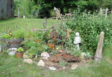 Pictures Of Primitive Gardens