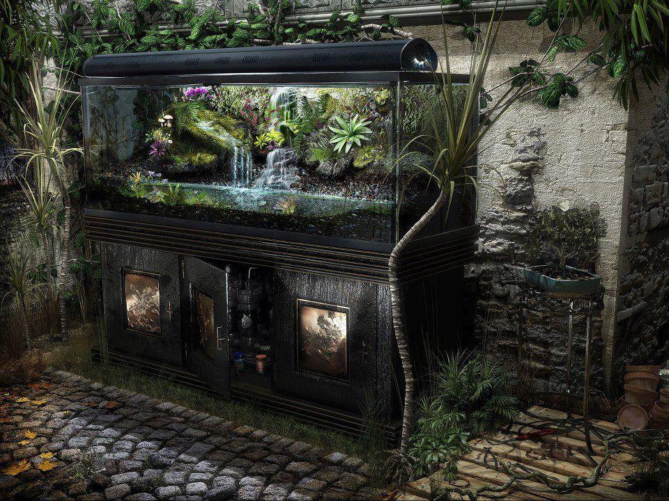 Abandoned Car In Swamp Wallpaper Unusual Aquariums Aquariums Fish Tanks Pinterest