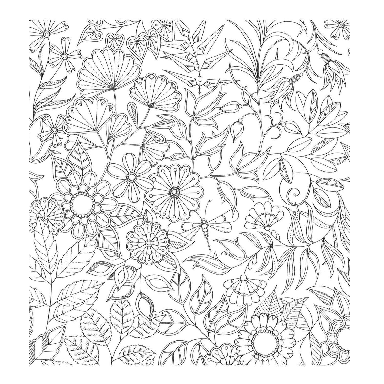 1000 Images About Volwassen Kleurplaten On Pinterest