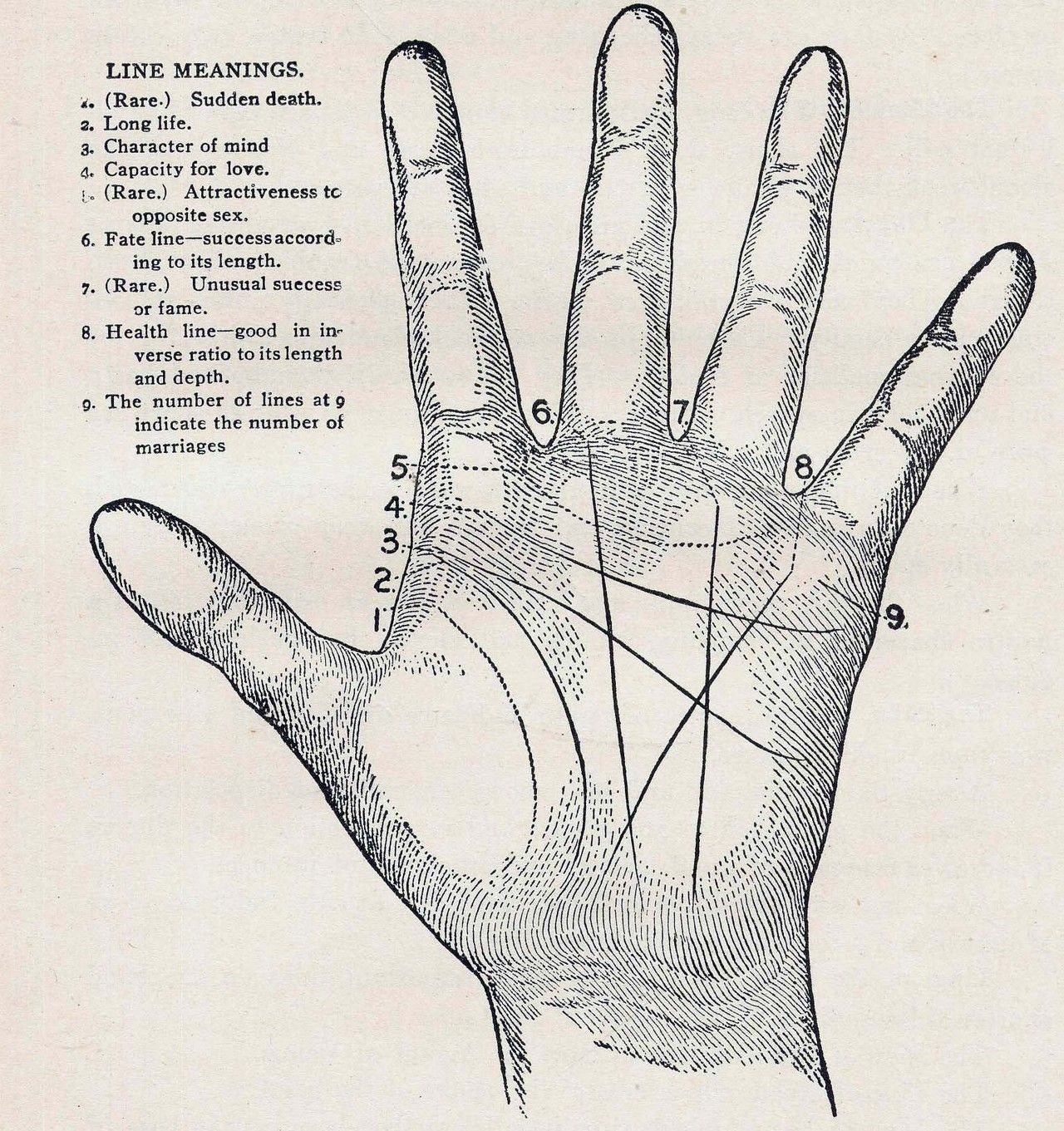 palmistry diagram marriage line nordyne condenser unit wiring palm reading get free image about