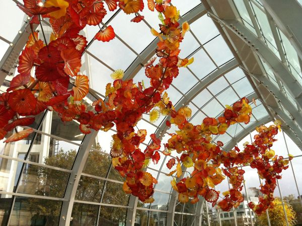 Chihuly Glass Museum In Seattle Tacoma