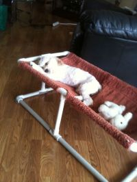 PVC Dog Bed... | DIY - Pet Products | Pinterest