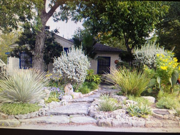 drought friendly landscaping