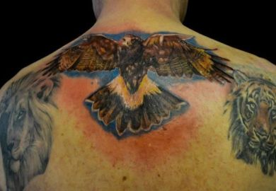 Images About Eagle Tattoos On Pinterest Eagle