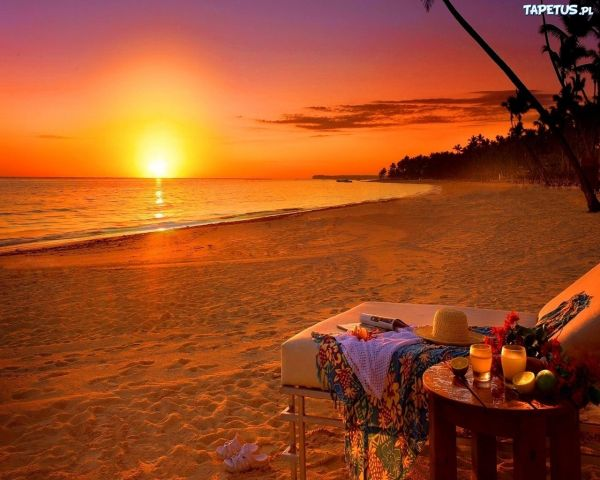 summer landscapes beautiful beaches