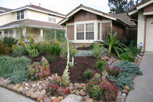grassless front yard -pie