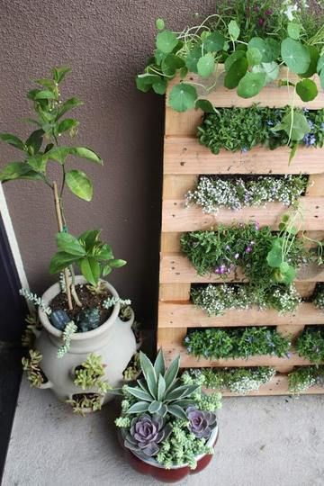 pallet planter... wonder if it would be good for strawberry's