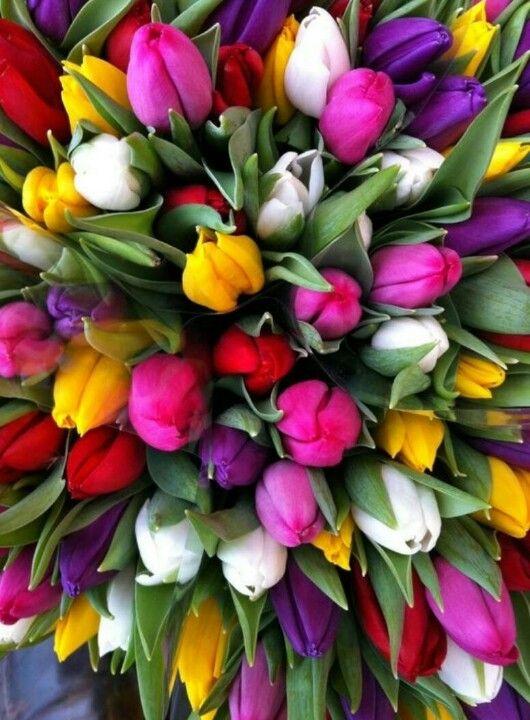 Flores llenas de color como los diseños de SALERO FASHION :)