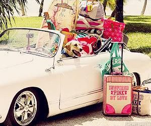 summer road trips <3