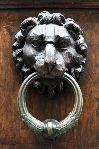 Porta battente leone a Firenze, Italia.  Questo colpo coud potuto essere molto più nitida, ma Ilked comunque.