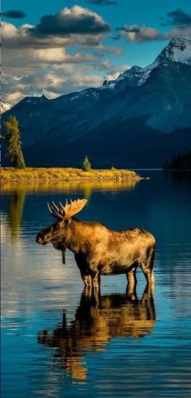 Moraine Lake ~ Banff National Park, Alberta, Canada • photo: Edward Marcinek on 500px