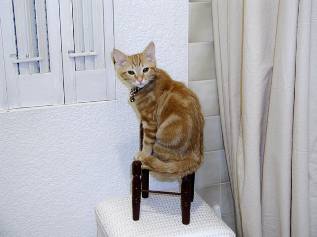 You are on the naughty chair